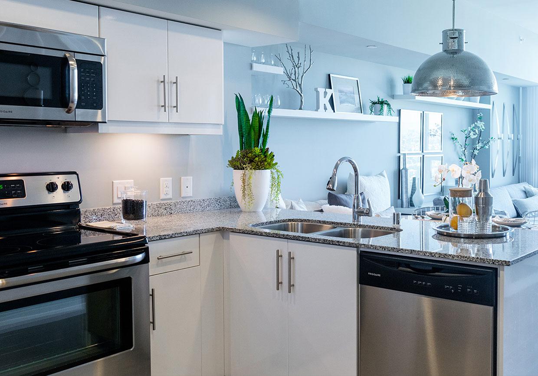 Apartament Kitchen